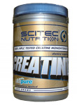 100% Creatine Pure 300g - , 300 g
