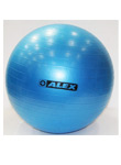 ALEX ANTI BURST GYM BALL - 55cm, 1 ks