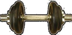 Činka MASTER 10 kg - 10 kg, 1 ks