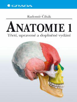 Anatomie 1 - , 1 ks